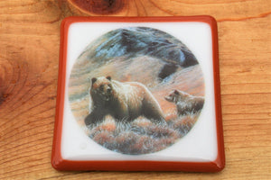 Grizzly Bear Coaster