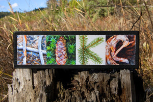 HIKE Nature Photo Wall Sign