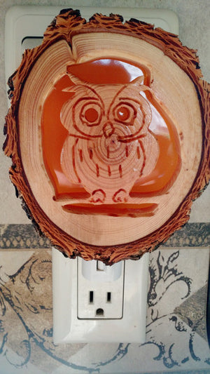 Owl Night Light - Distinctly Montana - 2