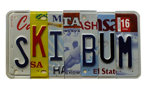 Ski Bum License Plate Wall Decor