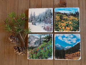 Montana Four Seasons Stone Coasters