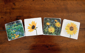 Montana Wildflower Coasters