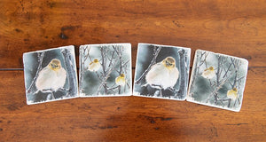Montana Yellow Finches Coasters