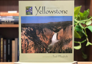Yellowstone Wild & Beautiful, Montana Book