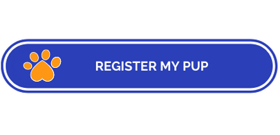 Register for Doggy Daycare