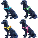 Wigzi Waterproof Reflective Padded Harness