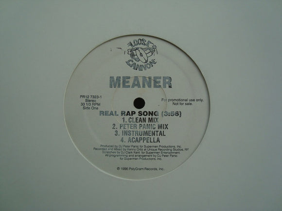 Meaner ‎– Real Rap Song (12