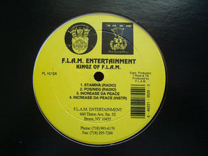 "Kingz Of F.L.A.M. ‎– Stamina / Pos-Neg / Increase Da Peace (12"")"