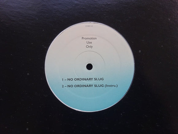 Ruff Ray Merc ‎– No Ordinary Slug (12