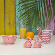 Load image into Gallery viewer, TROPICAL FLAMINGO SALT & PEPPER SHAKER SET