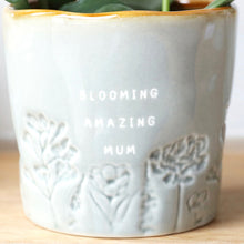 Load image into Gallery viewer, GLAZED OMBRÉ 'BLOOMING AMAZING MUM' PLANTER