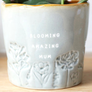 GLAZED OMBRÉ 'BLOOMING AMAZING MUM' PLANTER