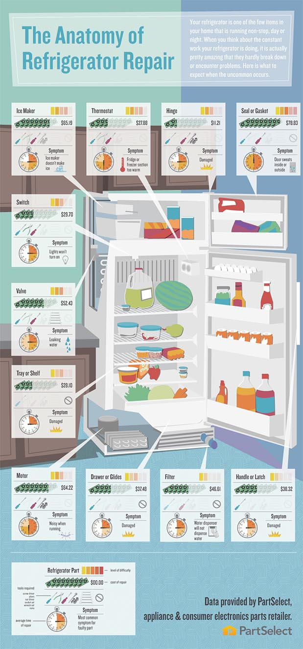 Infographic: The Anatomy of Refridgerator Repair