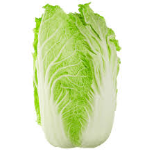 Cabbage Chinese Wombok Certified Organic