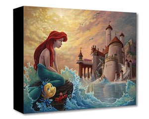 Treasures on Canvas – Ariel's Daydream