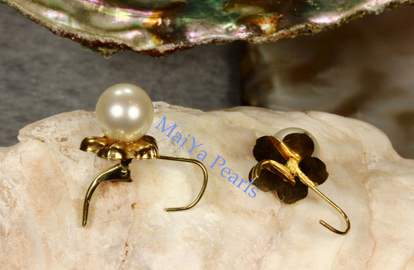 Earrings - 14k Yellow Gold Stunning AAA Off-White Freshwater Pearls on 14k Yellow Gold Flower Setting