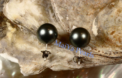 Pearl Studs Earrings - AAA Tahiti Black Pearl Dark Grey with Greenish overtone