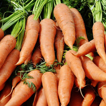 Load image into Gallery viewer, Organic Carrot - Autumn King - Vegetable Seeds
