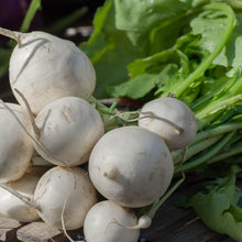 Load image into Gallery viewer, Turnip - Tokyo Cross F1 - Vegetable Seeds
