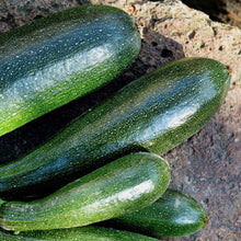 Load image into Gallery viewer, Courgette - Black Forest - Vegetable Seeds
