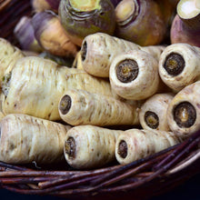 Load image into Gallery viewer, Parsnip - Tender And True - Vegetable Seeds