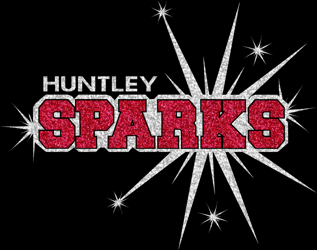 HUNTLEY SPARKS GLITTER TEE **TEAM MEMBERS ONLY**