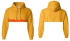 BS CROPPED HOODED PULLOVER SWEATSHIRTS