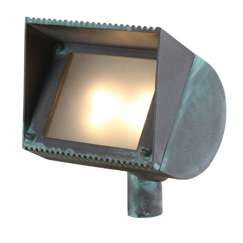 SPJ Lighting - Brass LED Directional Flood Light in Verde - SPJ-16EB
