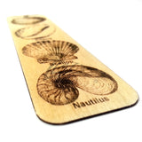 Book Marks Wooden Tags - Sea Shells (with Hole)