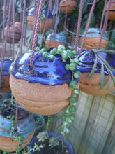 Load image into Gallery viewer, Tennis pots brown BRT clay picture showing pots planted with various succulents.