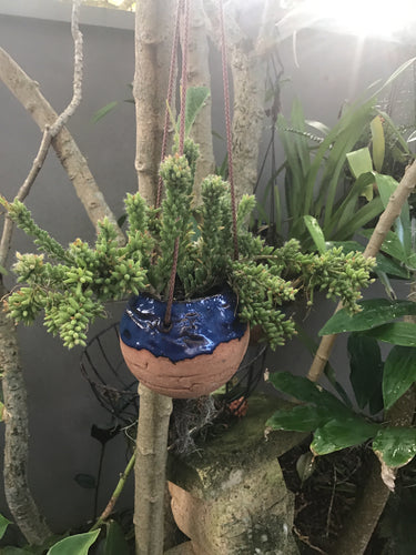 Bocce Hanging Pot Mid Night Blue Glaze . Plant in photo Rhipsalis .