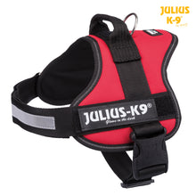 Load image into Gallery viewer, Julius-K9 Power Harness