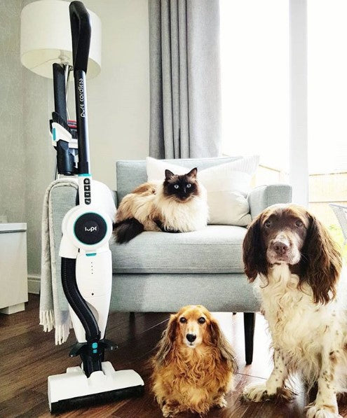 what makes a vacuum cleaner good for pet hair?