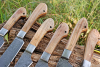 6 Pieces Hand Forged Damascus Steel Chef Kitchen Knives Set With Olive Wood Handle & Steel Bolster AH-1510