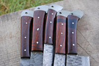 5 Pieces Hand Forged Damascus Steel Chef Kitchen Knives Set With Cocobolo Wood Handle AH-1512