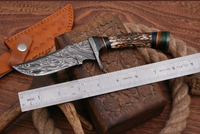Hand Forged Damascus Steel Hunting Knife With Stag and Damascus Guard Handle AH-1398