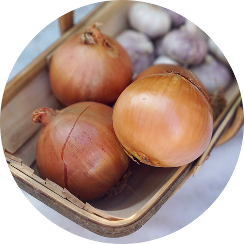 ONIONS ( 2 x Extra large )