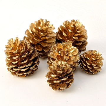 Gold Pine Cones - The Danes
