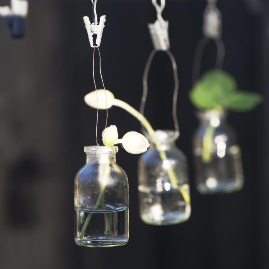 Mini Hanging Flower Bottles - Set Of 5 - The Danes