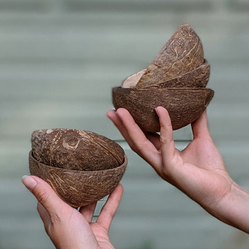 Natural Coconut Shell Bowl - The Danes