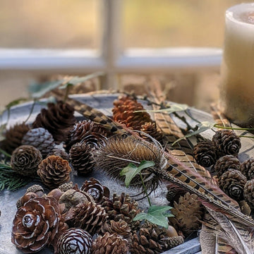 Natural Mixed Pine Cones - The Danes
