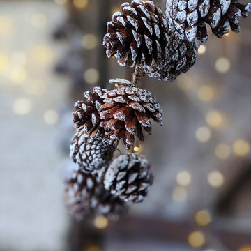 Natural Pine Cone Garland, 1.2m - The Danes