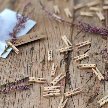 Natural Wooden Mini Pegs - The Danes