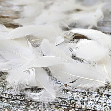 White Goose Feathers For Crafts - 3g - The Danes