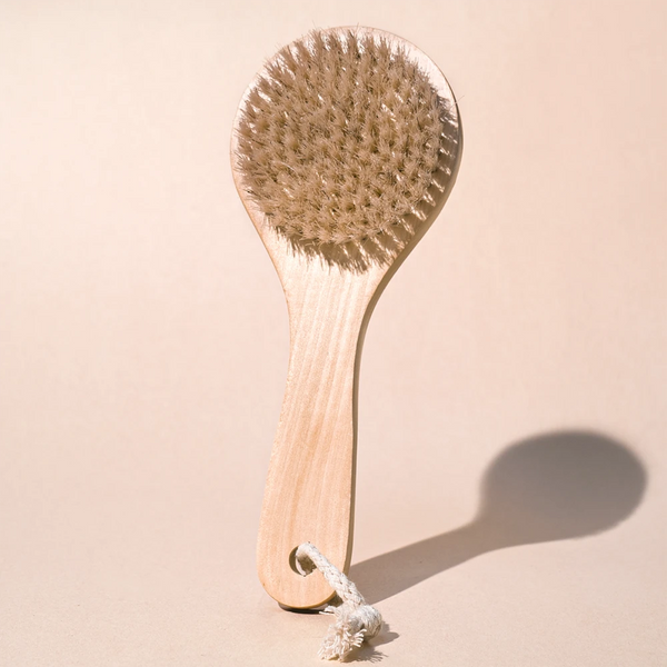 Bath & Beauty - Midnight Paloma Body Dry Brush