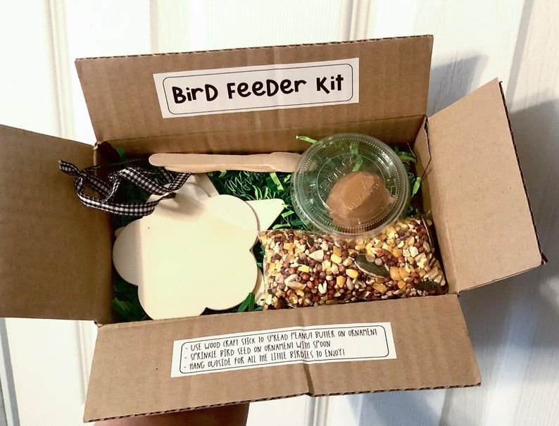 DIY Bird Feeder Kit for kids