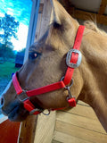 10 Ft Leadline Red/Black