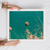 Desert Flower Digital Print | Turquoise Blue Printable Wall Art