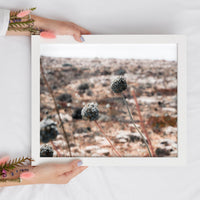 Flowers in the Desert Digital Print | Travel-Inspired Printable Art