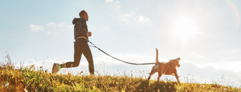 Can I run with my dog?